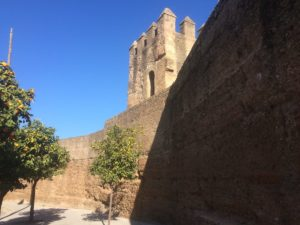Along the wall are orange trees and glimpses of Seville the old city