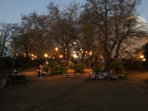 Even more Lights at El Huerto del Rey Moro