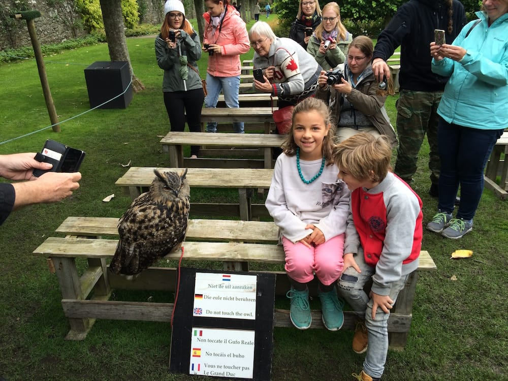 The kids and the Great Horned Owl
