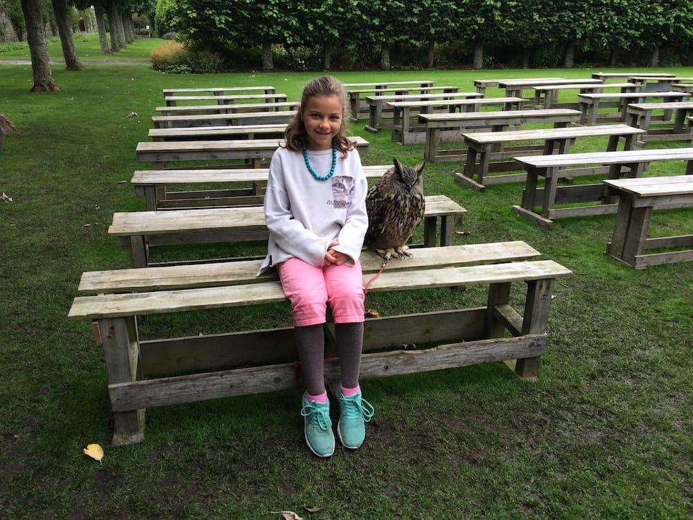 Ms.10 gets close to the great-horned owl
