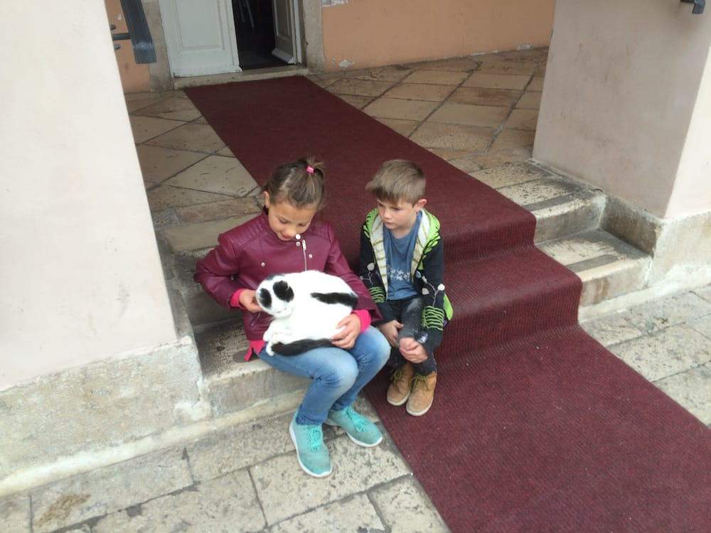 The old port and fortress of St. Ivan, the kids found another cat to love