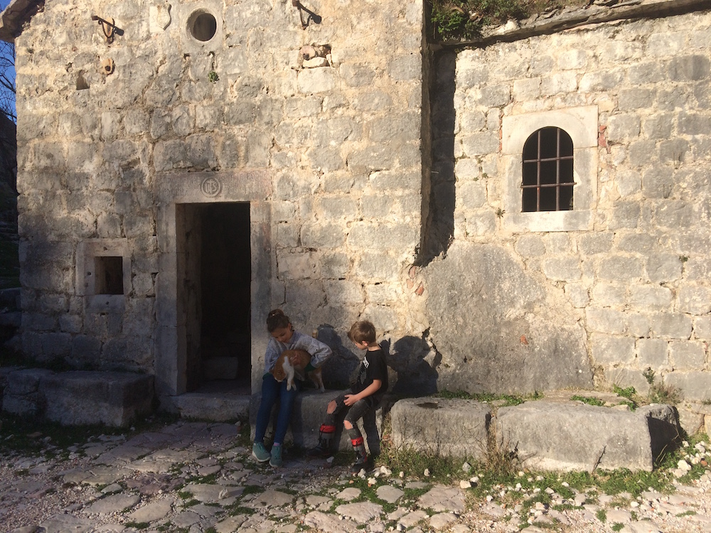 The kids caring for another of the Cats of Kotor