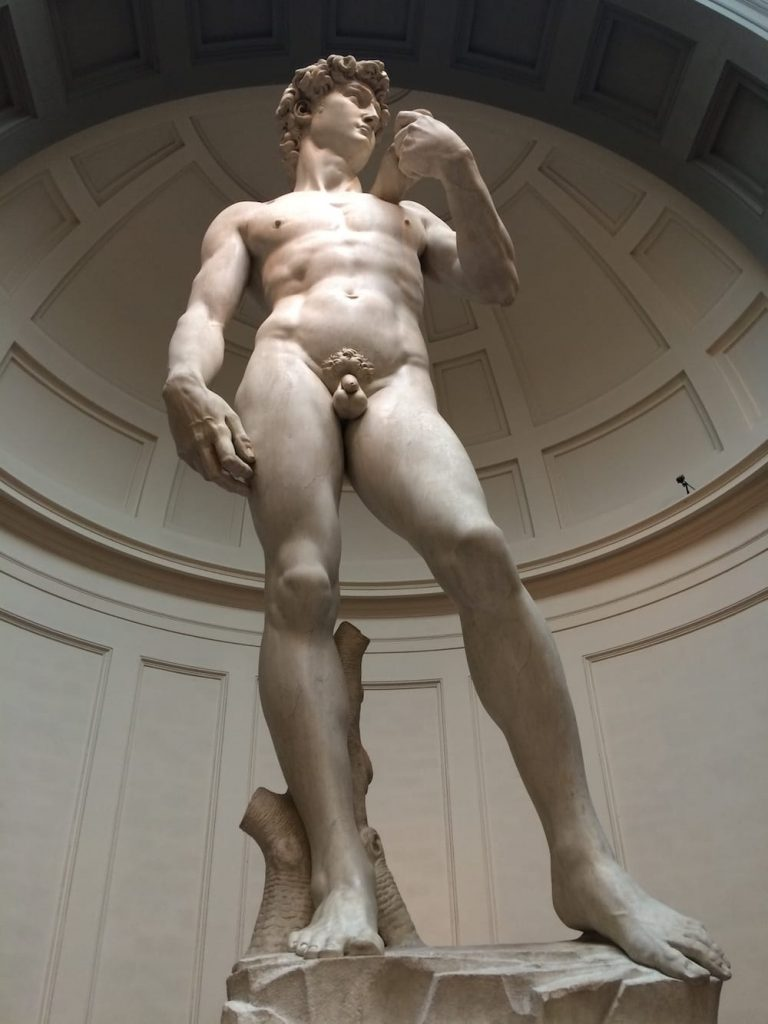 Statue of David viewed from the front, yes it's been done before