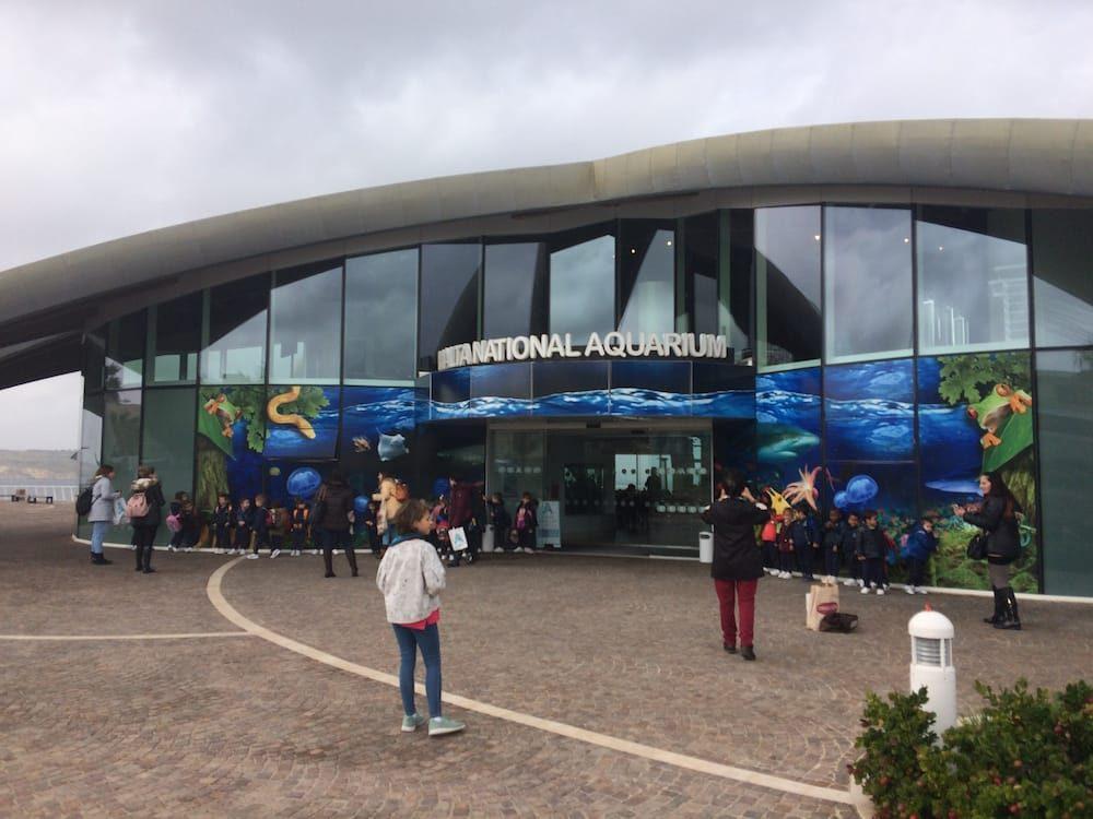 The Malta Aquarium!