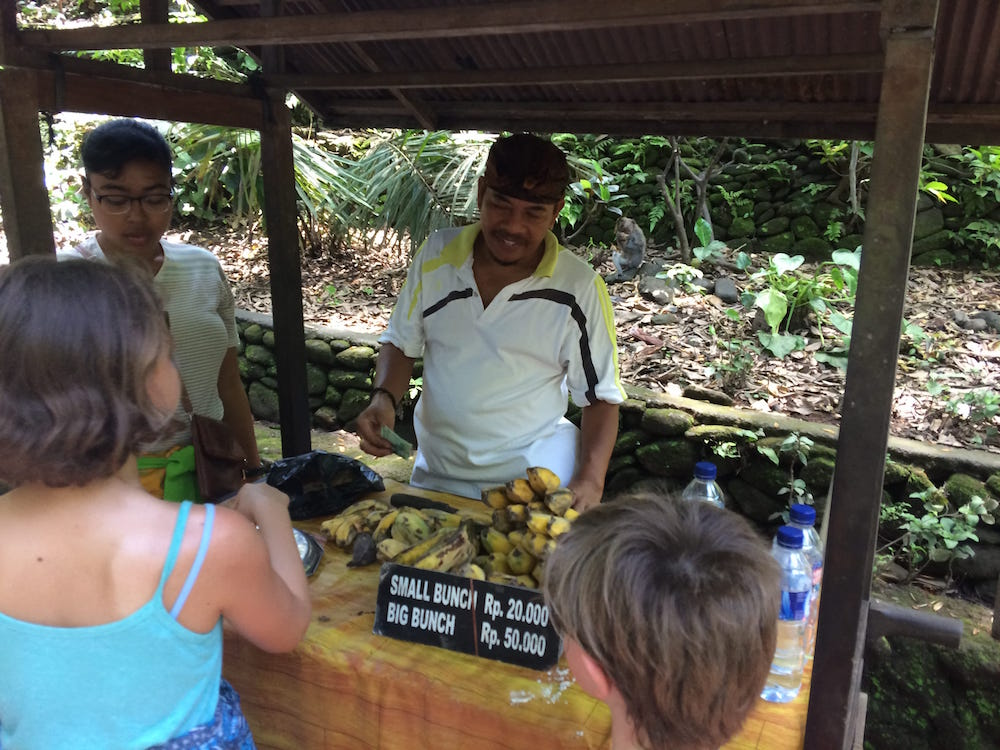 You can buy bananas for the monkeys at the Monkey Forest