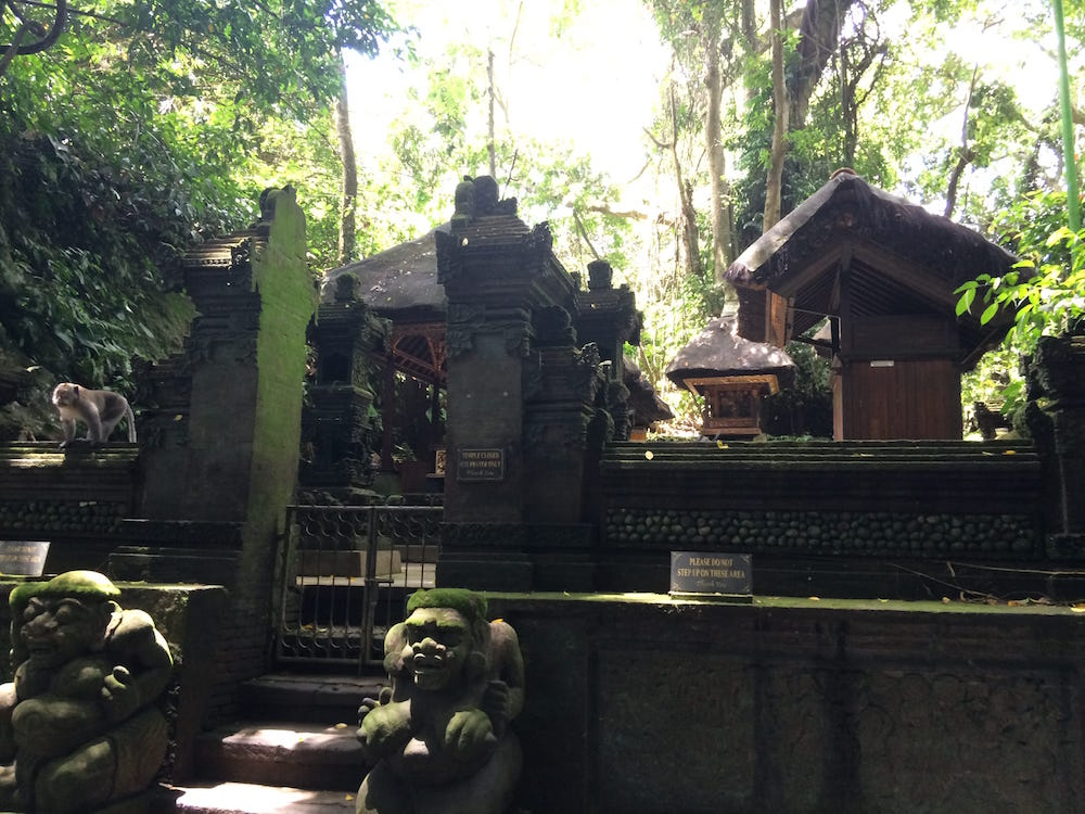 A temple at the centre of the Monkey Forest, the view over the wall is pretty amazing