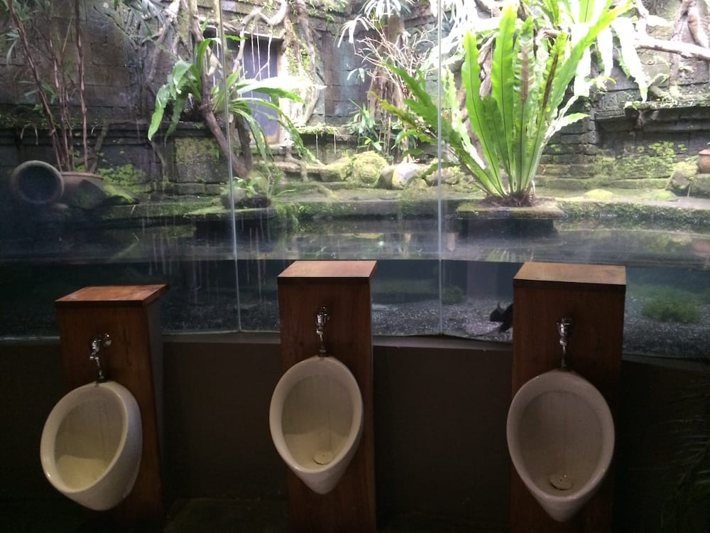 Amazing men's toilets at Bali Zoo, closeup