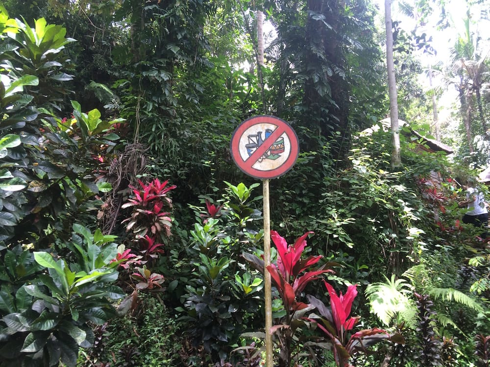 Don't do anything in this area, at Goa Gajah